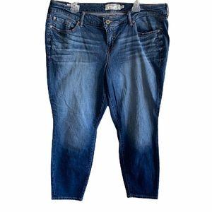 Torrid Ankle Skinny Jeans